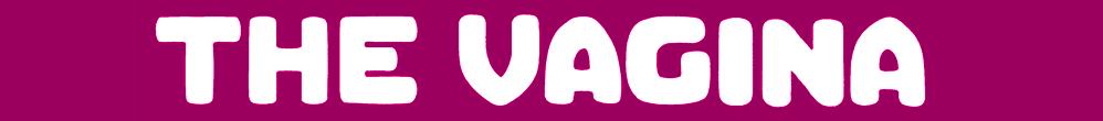 vag_header_2